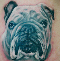 Bulldog portret tatoeage by Dutchink