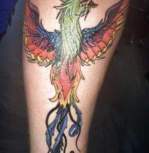 kleurrijke phoenix getatoeerd door Dutch Ink