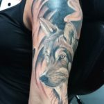 Black and Gray wolf tatoeage op de arm