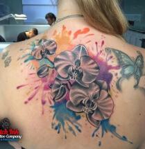 Bloemen in kleur zee op rug
