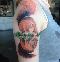 Eekhoorn op bovenarm