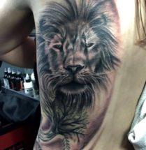 Leeuw op zij