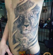 Leeuw met lammetje op zij