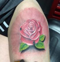 Roos op bovenbeen
