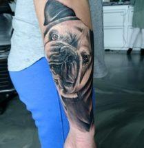 Portret hond op onderarm